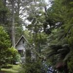 pousada-e-parque-das-sequoias